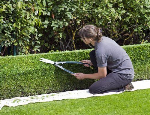 Zonas verdes: es imprescindible que añadan valor a la vivienda