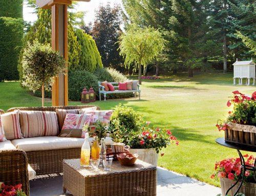 ¿Qué plantas vienen bien en el jardín durante el verano?